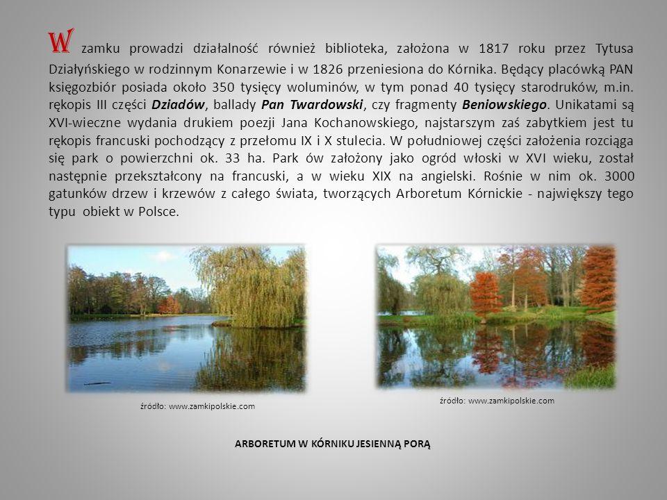 W zamku prowadzi działalność również biblioteka, założona w 1817 roku przez Tytusa Działyńskiego w rodzinnym Konarzewie i w 1826 przeniesiona do Kórnika.