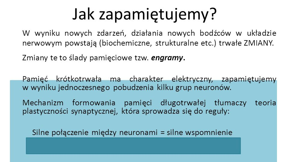 Prezentację przygotowała: Magdalena Żądkowska
