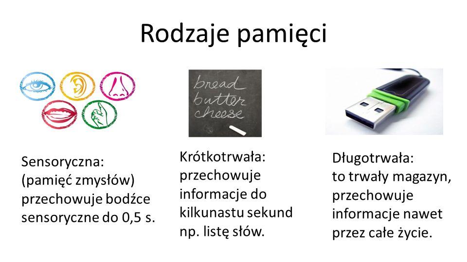 Źródła Treść Rostowski, J.(2012). Rozwój mózgu człowieka w cyklu życia.