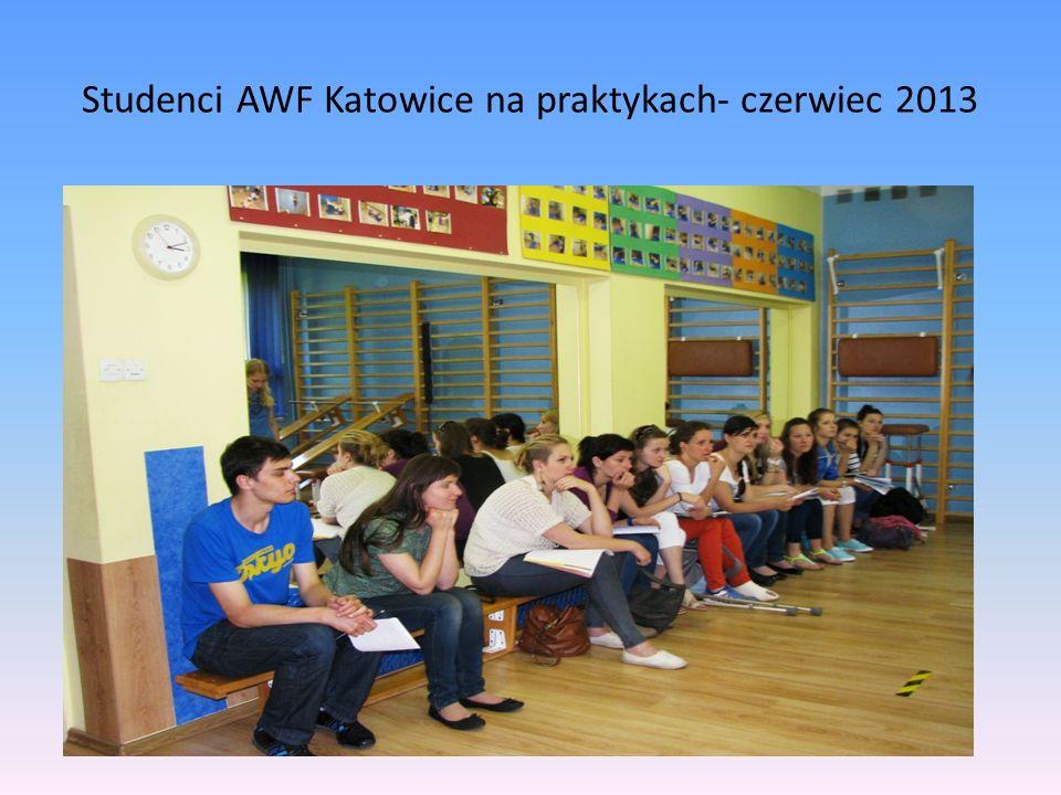 Studenci AWF Katowice na praktykach- czerwiec 2013