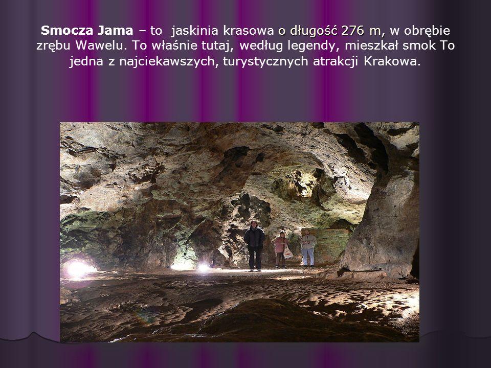 o długość 276 m, Smocza Jama – to jaskinia krasowa o długość 276 m, w obrębie zrębu Wawelu.