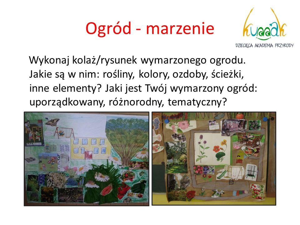 Ogród - marzenie Wykonaj kolaż/rysunek wymarzonego ogrodu. Jakie są w nim: rośliny, kolory, ozdoby, ścieżki, inne elementy? Jaki jest Twój wymarzony o