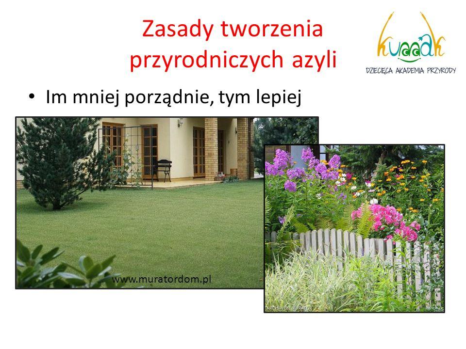 Zasady tworzenia przyrodniczych azyli Im mniej porządnie, tym lepiej www.muratordom.pl