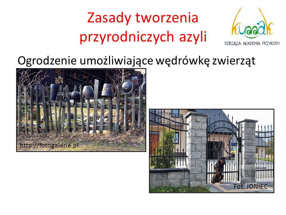 Zasady tworzenia przyrodniczych azyli Ogrodzenie umożliwiające wędrówkę zwierząt Fot. JONIEC http://fotogalerie.pl