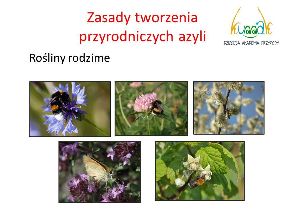 Zasady tworzenia przyrodniczych azyli Rośliny rodzime