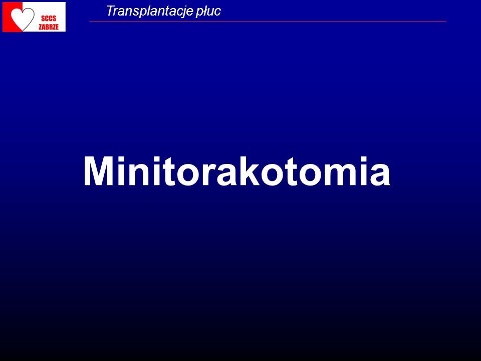 Minitorakotomia