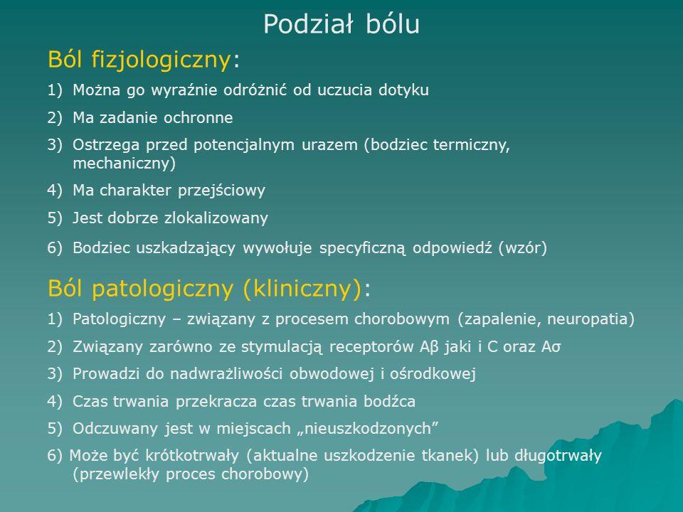 """Podział bólu Ból fizjologiczny: 1)Można go wyraźnie odróżnić od uczucia dotyku 2)Ma zadanie ochronne 3)Ostrzega przed potencjalnym urazem (bodziec termiczny, mechaniczny) 4)Ma charakter przejściowy 5)Jest dobrze zlokalizowany 6)Bodziec uszkadzający wywołuje specyficzną odpowiedź (wzór) Ból patologiczny (kliniczny): 1)Patologiczny – związany z procesem chorobowym (zapalenie, neuropatia) 2)Związany zarówno ze stymulacją receptorów Aβ jaki i C oraz Aσ 3)Prowadzi do nadwrażliwości obwodowej i ośrodkowej 4)Czas trwania przekracza czas trwania bodźca 5)Odczuwany jest w miejscach """"nieuszkodzonych 6) Może być krótkotrwały (aktualne uszkodzenie tkanek) lub długotrwały (przewlekły proces chorobowy)"""