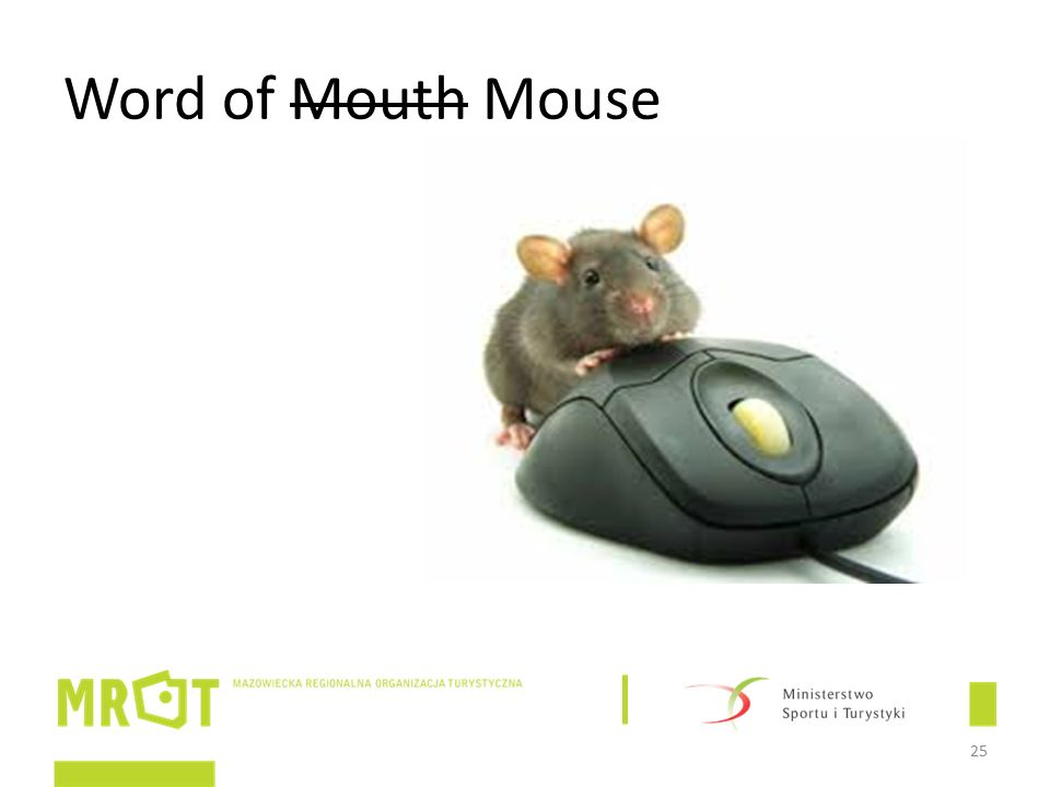 Word of Mouth Mouse 25
