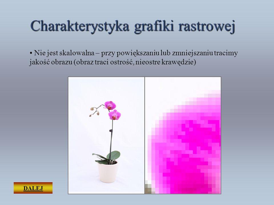 DALEJ Charakterystyka grafiki rastrowej Obraz może się składać z ponad 16 milionów kolorów Można przedstawiać skomplikowane barwnie obrazy – nadaje się do zapisywania fotografii cyfrowej, realistycznych obrazów czy skanowania Wymaga kompresji dla dużych i skomplikowanych obrazów np.: zdjęcia z aparatu cyfrowego.