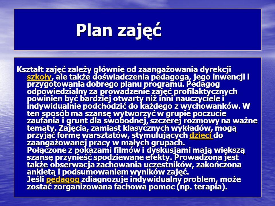 Plan zajęć Plan zajęć Kształt zajęć zależy głównie od zaangażowania dyrekcji szkoły, ale także doświadczenia pedagoga, jego inwencji i przygotowania d