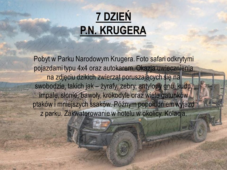 7 DZIEŃ P.N. KRUGERA Pobyt w Parku Narodowym Krugera. Foto safari odkrytymi pojazdami typu 4x4 oraz autokarem. Okazja uwiecznienia na zdjęciu dzikich