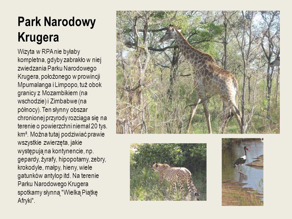 Park Narodowy Krugera Wizyta w RPA nie byłaby kompletna, gdyby zabrakło w niej zwiedzania Parku Narodowego Krugera, położonego w prowincji Mpumalanga i Limpopo, tuż obok granicy z Mozambikiem (na wschodzie) i Zimbabwe (na północy).