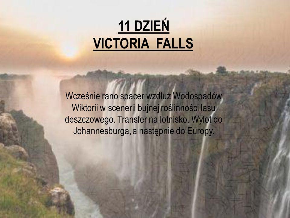 11 DZIEŃ VICTORIA FALLS Wcześnie rano spacer wzdłuż Wodospadów Wiktorii w scenerii bujnej roślinności lasu deszczowego. Transfer na lotnisko. Wylot do