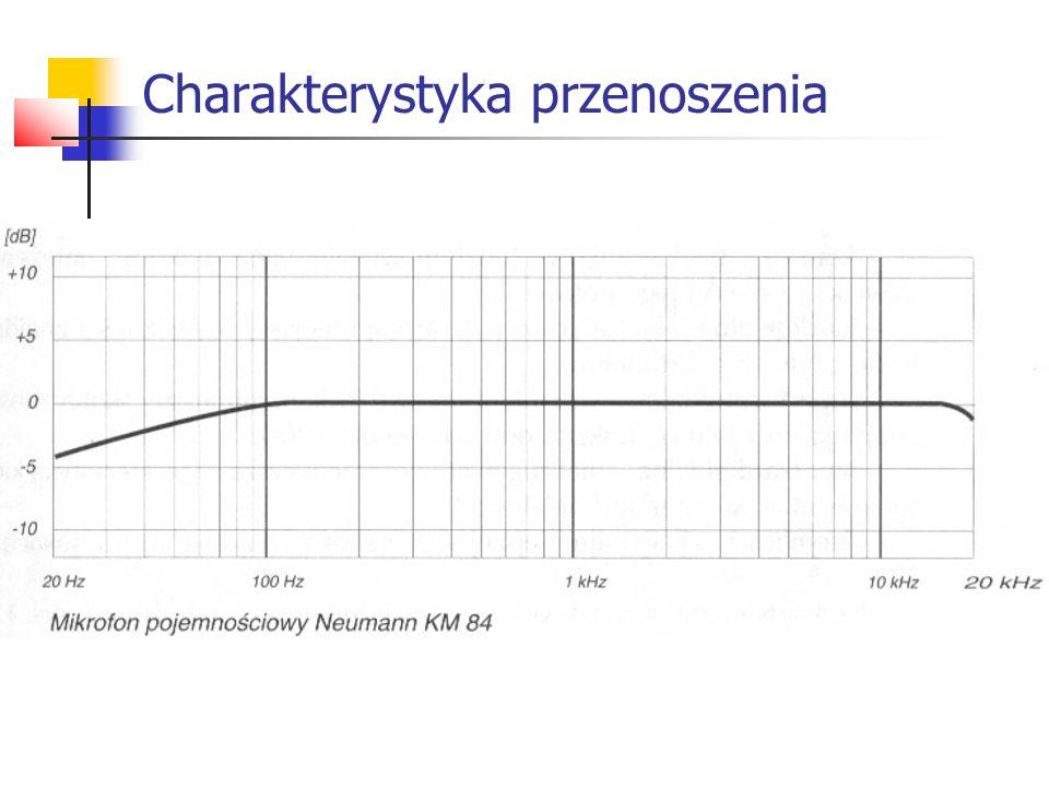 Dynamika Jest to odległość pomiędzy najgłośniejszym dźwiękiem przeniesionym bez zniekształceń (SPL) a dźwiękiem najcichszym (szumem własnym).