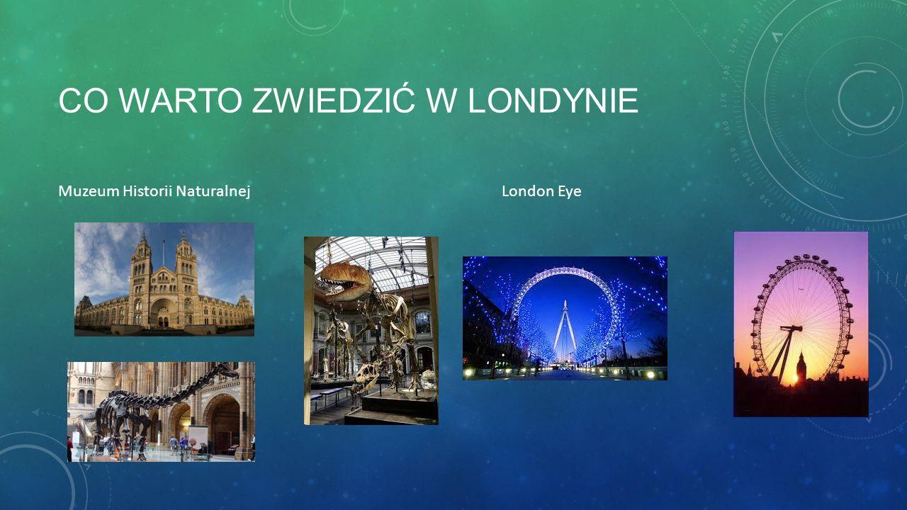 CO WARTO ZWIEDZIĆ W LONDYNIE Muzeum Historii Naturalnej London Eye