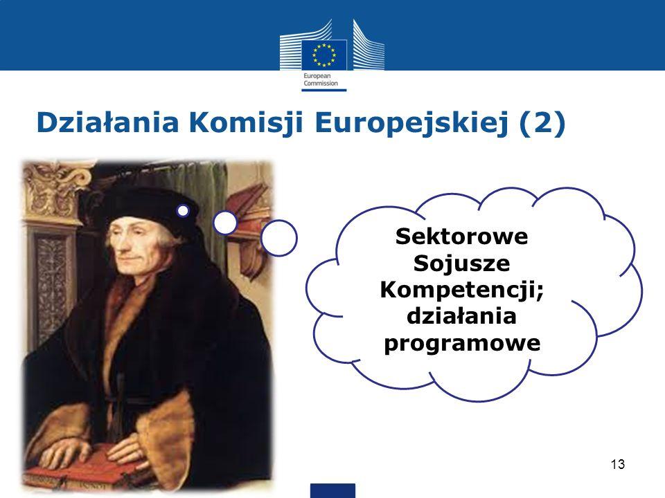 Działania Komisji Europejskiej (2) 13 Sektorowe Sojusze Kompetencji; działania programowe