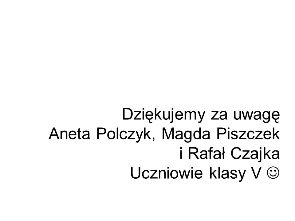 Dziękujemy za uwagę Aneta Polczyk, Magda Piszczek i Rafał Czajka Uczniowie klasy V