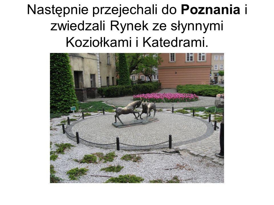 Następnie przejechali do Poznania i zwiedzali Rynek ze słynnymi Koziołkami i Katedrami.