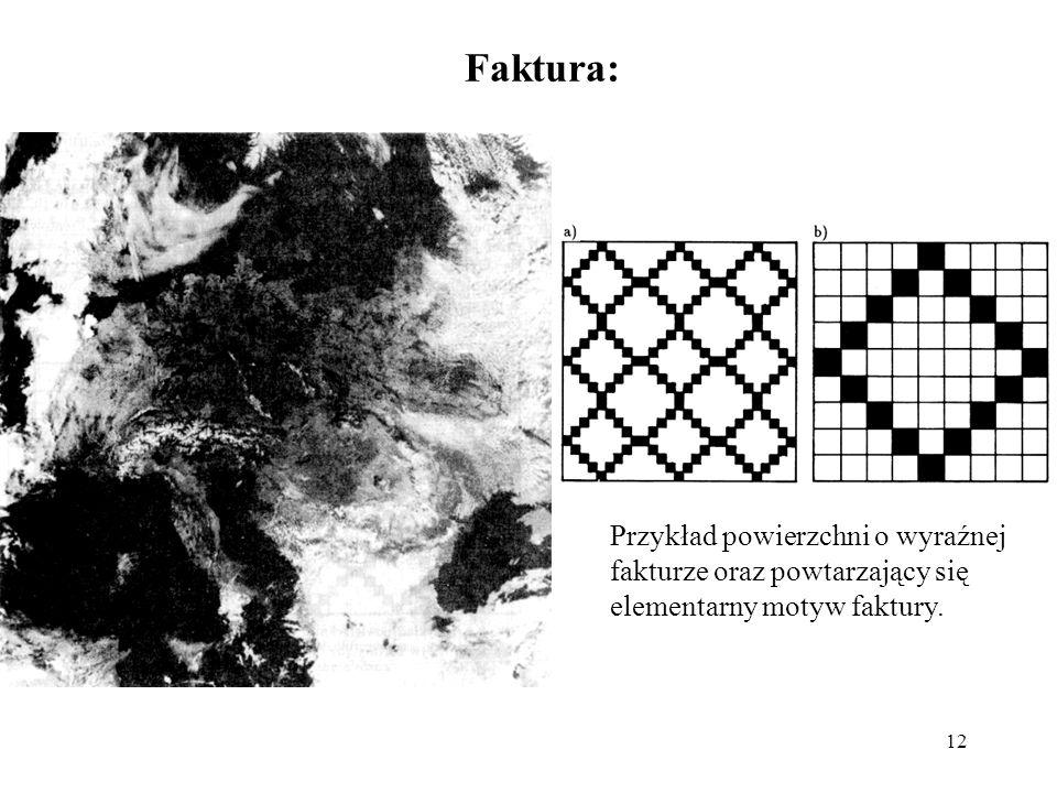 12 Faktura: Przykład powierzchni o wyraźnej fakturze oraz powtarzający się elementarny motyw faktury.