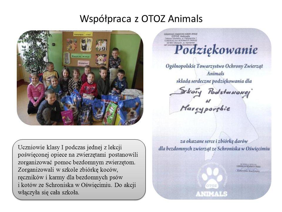 Współpraca z OTOZ Animals Uczniowie klasy I podczas jednej z lekcji poświęconej opiece na zwierzętami postanowili zorganizować pomoc bezdomnym zwierzętom.