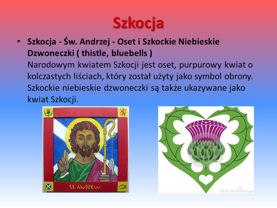 Szkocja Szkocja - Św.