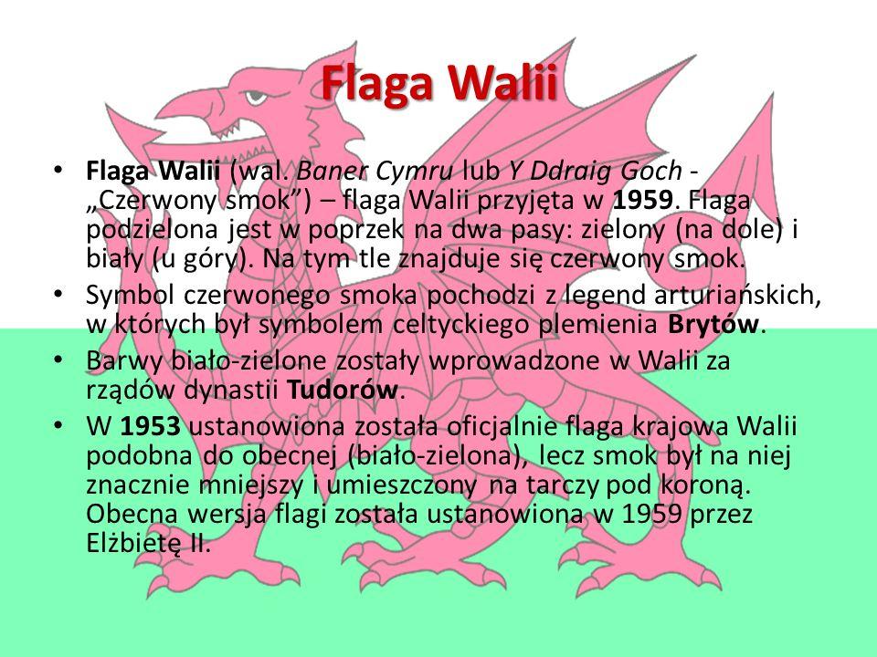 Flaga Walii Flaga Walii (wal.
