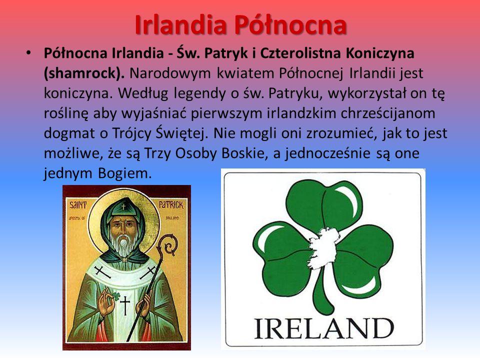 Irlandia Północna Północna Irlandia - Św.Patryk i Czterolistna Koniczyna (shamrock).