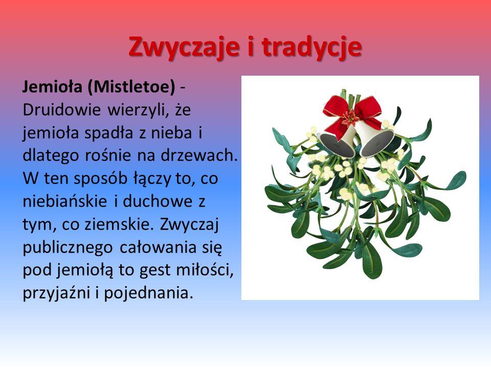 Jemioła (Mistletoe) - Druidowie wierzyli, że jemioła spadła z nieba i dlatego rośnie na drzewach.