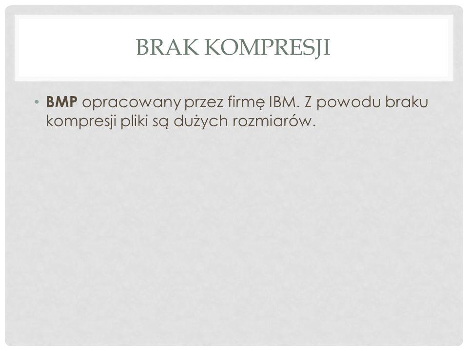 BRAK KOMPRESJI BMP opracowany przez firmę IBM. Z powodu braku kompresji pliki są dużych rozmiarów.