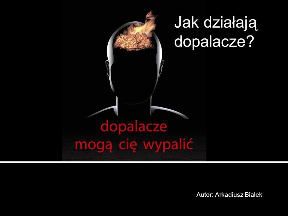 Autor: Arkadiusz Białek