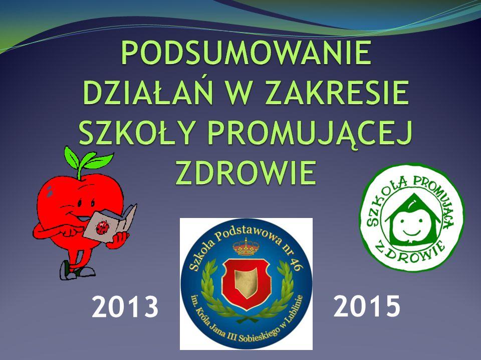 2013 2015