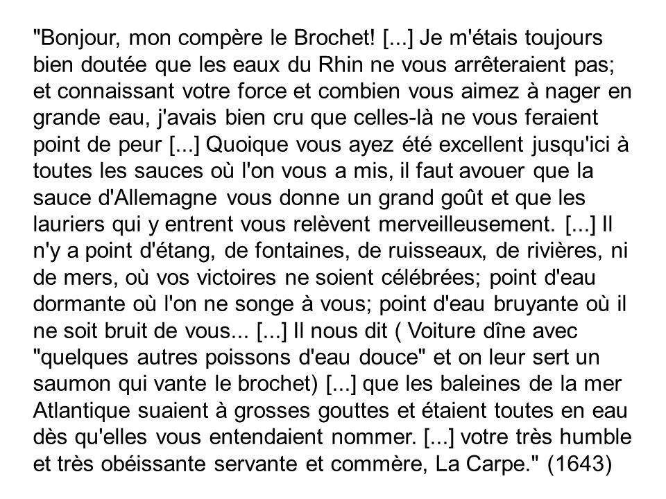 Bonjour, mon compère le Brochet.