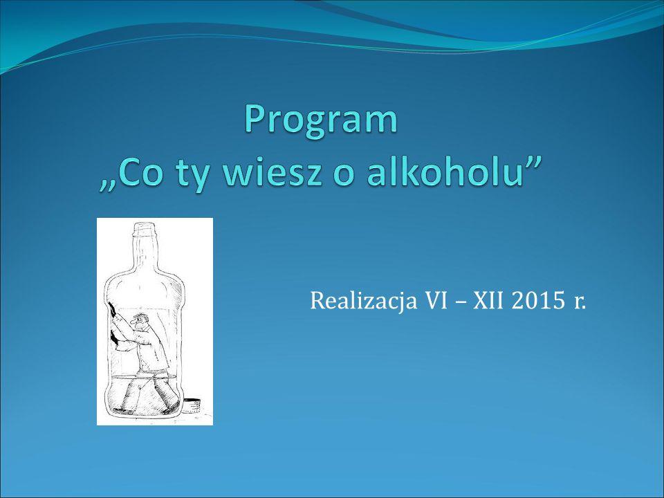 Realizacja VI – XII 2015 r.