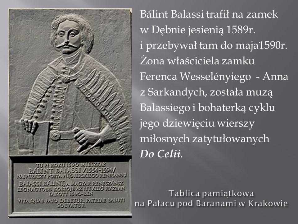 Bálint Balassi trafił na zamek w Dębnie jesienią 1589r. i przebywał tam do maja1590r. Żona właściciela zamku Ferenca Wesselényiego - Anna z Sarkandych