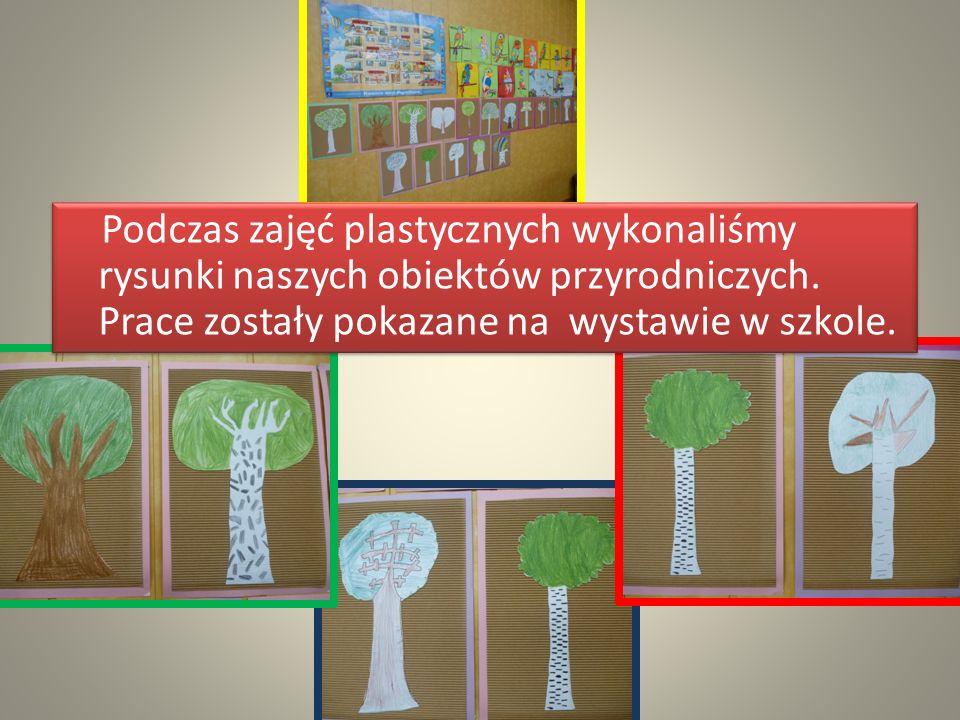 Podczas zajęć plastycznych wykonaliśmy rysunki naszych obiektów przyrodniczych. Prace zostały pokazane na wystawie w szkole.