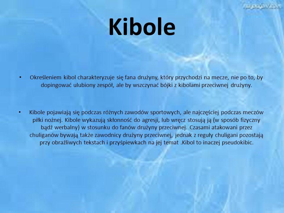 Kibole Określeniem kibol charakteryzuje się fana drużyny, który przychodzi na mecze, nie po to, by dopingować ulubiony zespół, ale by wszczynać bójki