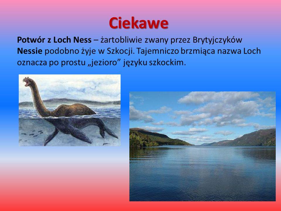 """Ciekawe Potwór z Loch Ness – żartobliwie zwany przez Brytyjczyków Nessie podobno żyje w Szkocji. Tajemniczo brzmiąca nazwa Loch oznacza po prostu """"jez"""