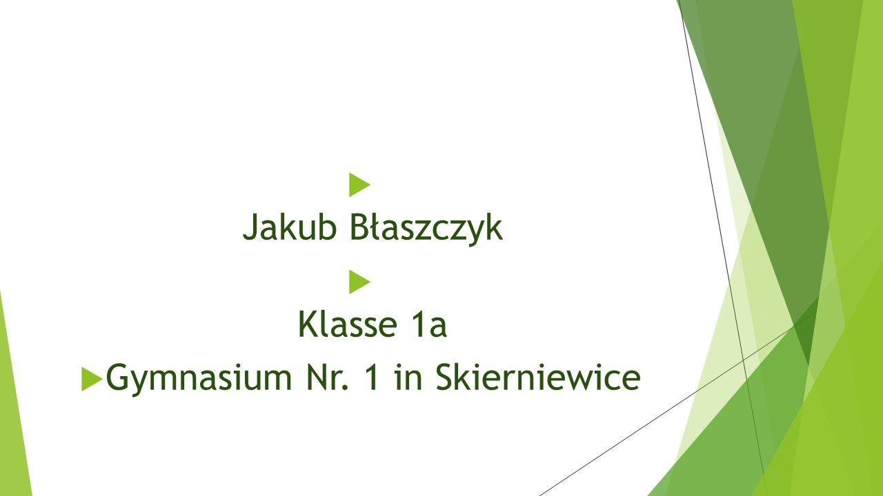  Jakub Błaszczyk  Klasse 1a  Gymnasium Nr. 1 in Skierniewice