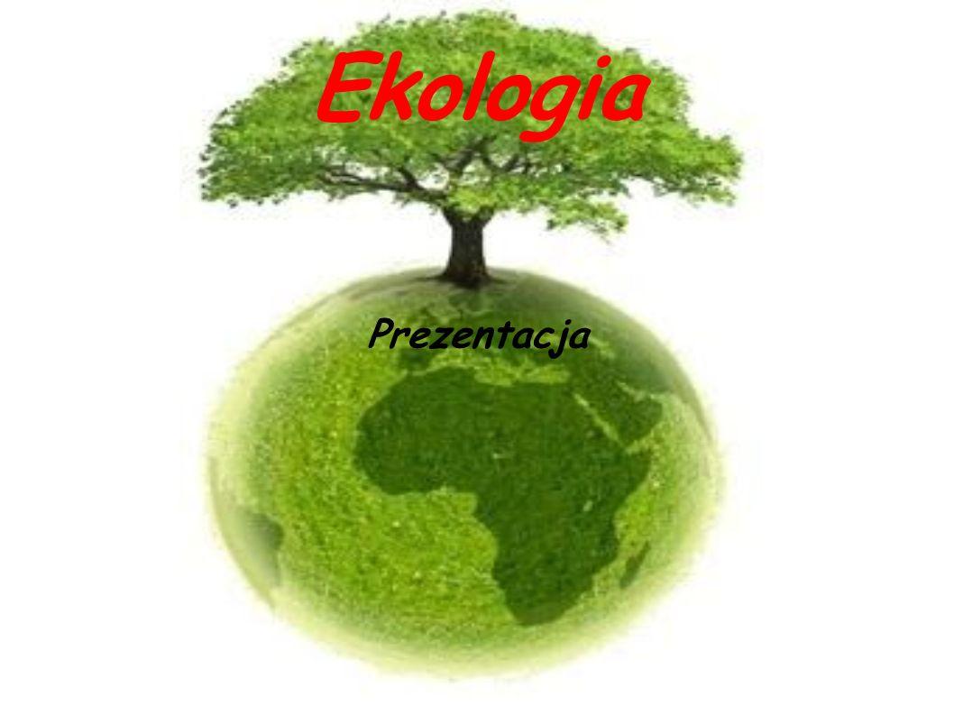 Ekologia Prezentacja