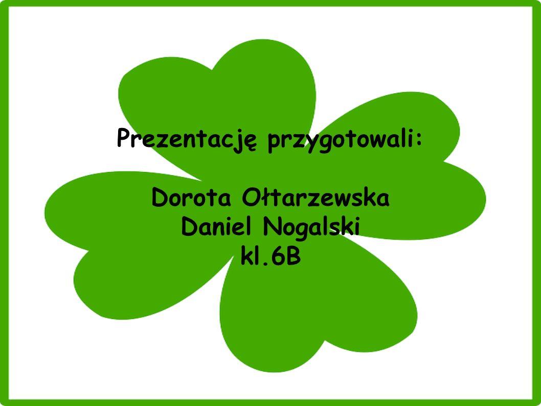 Prezentację przygotowali: Dorota Ołtarzewska Daniel Nogalski kl.6B