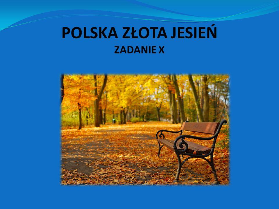 W naszej świetlicy cykl tematów jesiennych rozpoczął się 23 września w PIERWSZY DZIEŃ JESIENI.
