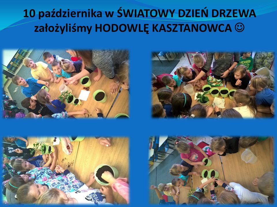 Tego samego dnia zorganizowaliśmy szkolny konkurs plastyczno – literacki pt.
