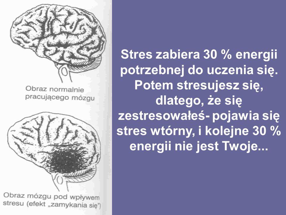 Stres zabiera 30 % energii potrzebnej do uczenia się.