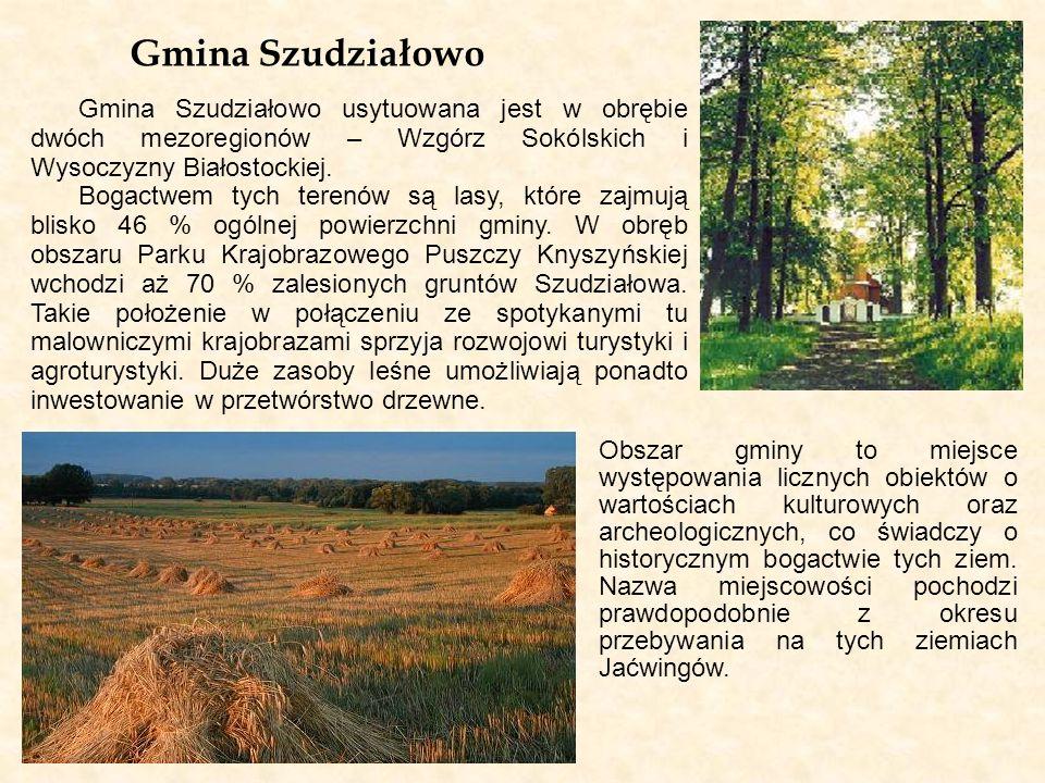 Gmina Szudziałowo Gmina Szudziałowo usytuowana jest w obrębie dwóch mezoregionów – Wzgórz Sokólskich i Wysoczyzny Białostockiej. Bogactwem tych terenó