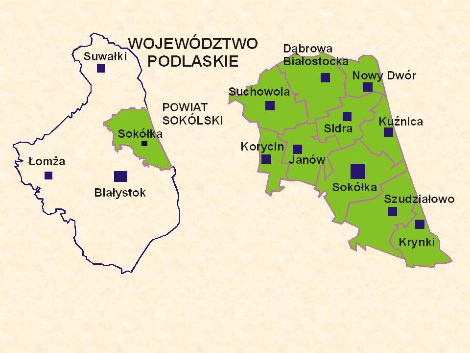 Pow: 2054,42km 2, co stanowi 11% obszaru województwa Podlaskiego.