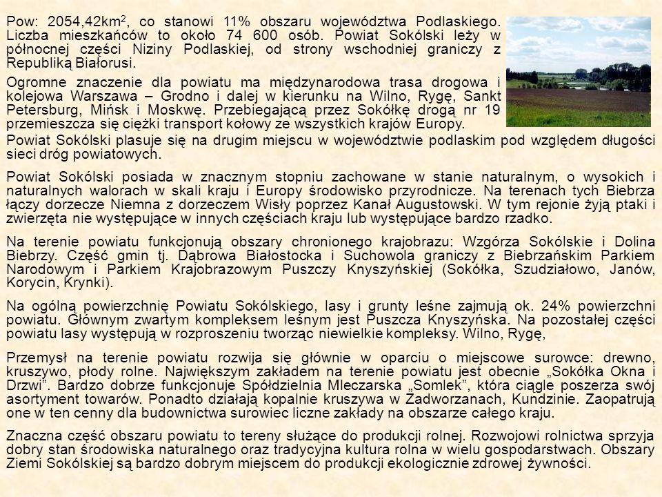 Pow: 2054,42km 2, co stanowi 11% obszaru województwa Podlaskiego. Liczba mieszkańców to około 74 600 osób. Powiat Sokólski leży w północnej części Niz