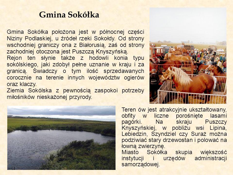 Gmina Sokółka Gmina Sokółka położona jest w północnej części Niziny Podlaskiej, u źródeł rzeki Sokołdy. Od strony wschodniej graniczy ona z Białorusią