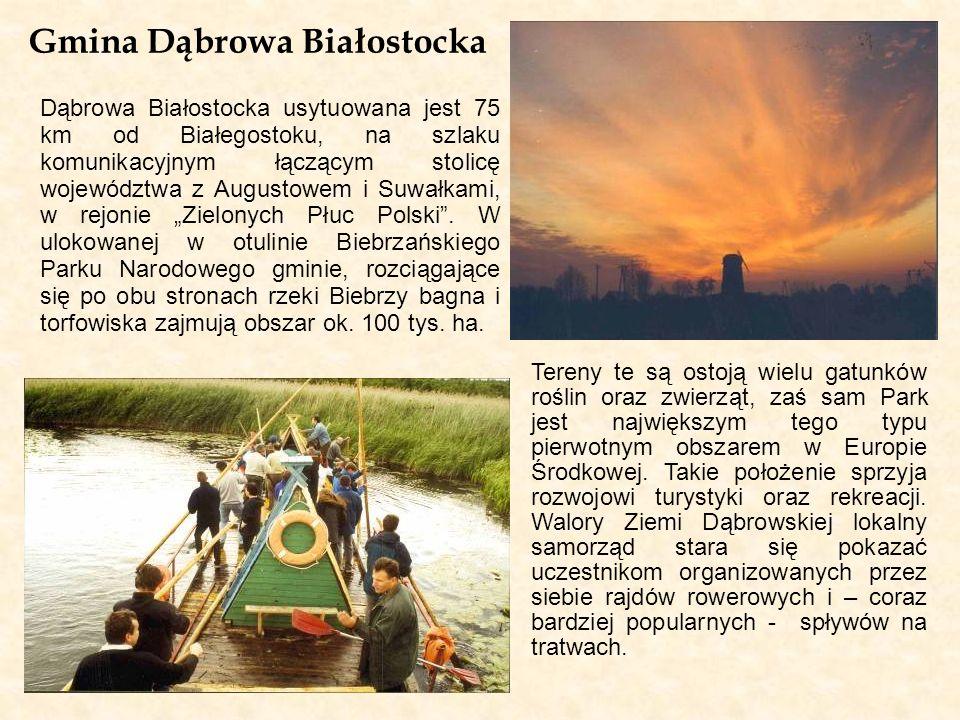 Gmina Dąbrowa Białostocka Dąbrowa Białostocka usytuowana jest 75 km od Białegostoku, na szlaku komunikacyjnym łączącym stolicę województwa z Augustowe