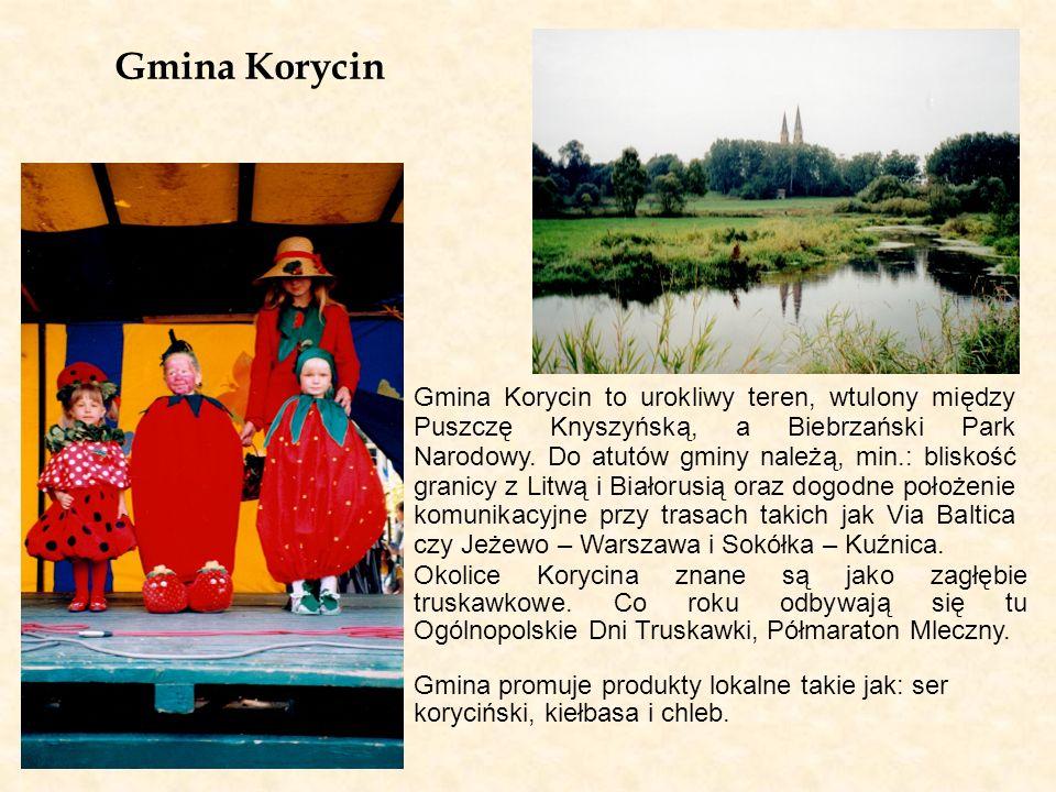 Gmina Krynki Gmina Krynki położona jest we wschodniej części województwa podlaskiego, nad rzeką Krynką – lewym dopływem Świsłoczy (rzeka graniczna Polski i Białorusi).