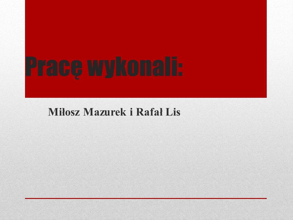 Pracę wykonali: Miłosz Mazurek i Rafał Lis